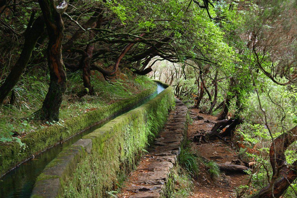 ¿Qué visitar en Madeira? 3