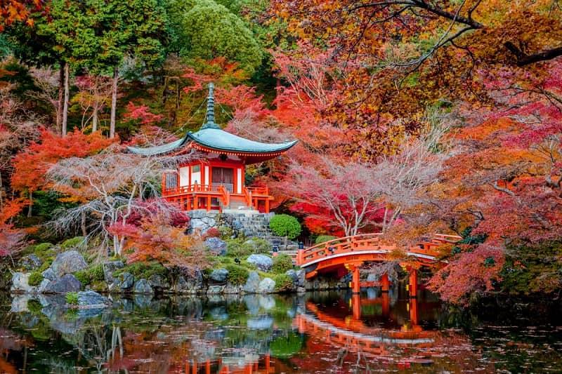 Cuándo viajar a Japón 3